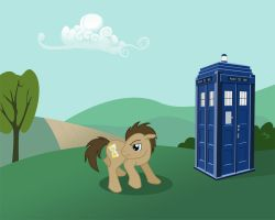 Dr. Whooves and the Tardis by lokineko
