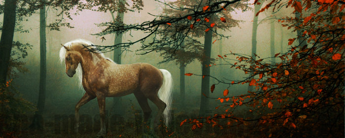 Smells like Autumn by ana-made-it