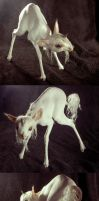 Willow the Unicorn Foal by SovaeArt