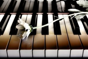 Pianissimo by Poobotsmellyweebum