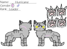 Hurricane Ref -Rogue Group- by blackkittenpawz