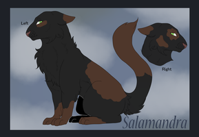 [CLOSED] Salamander by Bayonettu