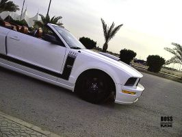 BOSS 302 by HZON