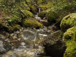 Trickle through mossy rocks by Meagharan