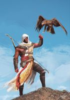 Assassin's Creed Origins Bayek by wert23