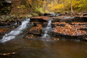 Ricketts Glen (Small waterfall) by FOTOSHOPIC
