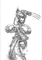 wolverine commission by keucha