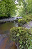 River Wye in Chee Dale by pjones747