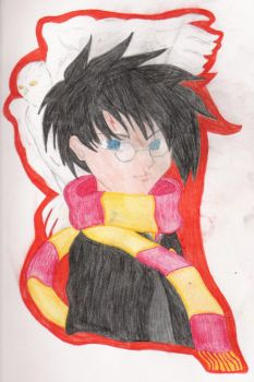 + HARRY AND HEDWIG + by Harry-J-Potter-Club