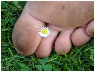 toes and daisy by TeaRoseMoon