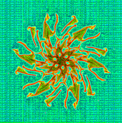 A Small Code Flake in the Cyberspace Pond by Smartstocks