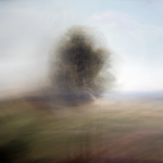 Prairie Winds by intao