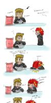 KH2 - I called Roxas gay by Shadowgirl89