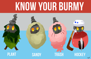 Know Your Burmy