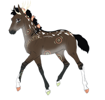 N838 Padro Foal Design for xIcepelt by casinuba