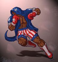 Street Fighter Series Boxer (Balrog / M. Bison) by GalvanTDB