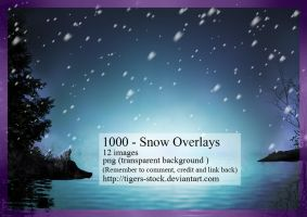 1000 - Snow Overlays by Tigers-stock