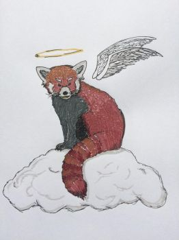 Red Panda by Coi-0