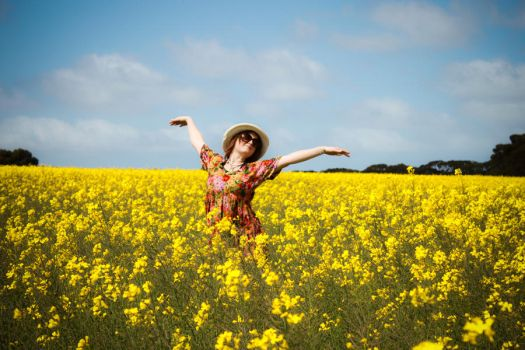 Canola Fields, Joy by bakanya