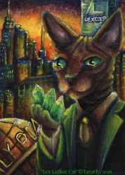 Lex Luthor Cat by TaraFlyArt