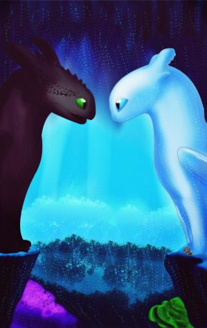 Light Fury and Toothless by cutecolorful