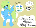 Dream Cloud Updated Reference by quila111
