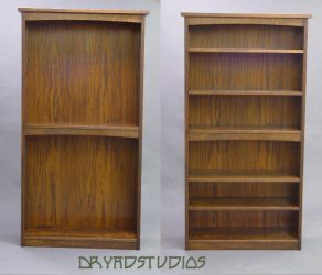 Bookcases-w and w-out  shelves by DryadStudios