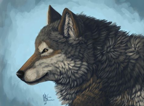 Wolf Profile by Kuvari