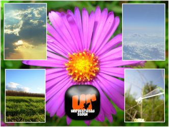 Nature Pack by Unrestricted-Stock