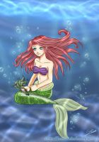 Little Mermaid by Nawal