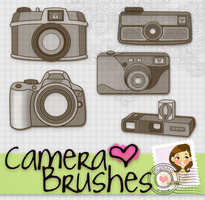 Camera Brushes by Payasiita