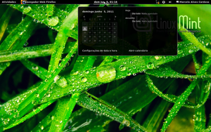 Gnome 3 in Linux Mint-2 by malvescardoso
