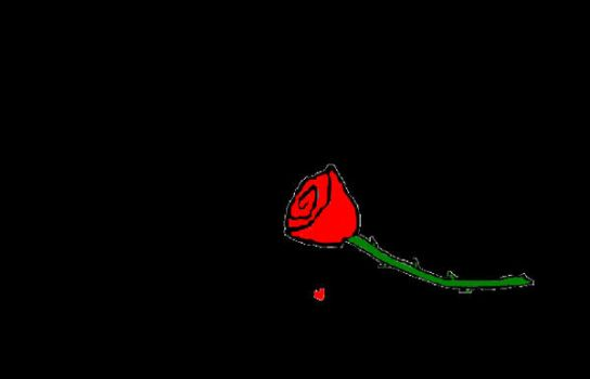 A single rose? by soturan