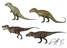 Evolution of the T. rex by Pachyornis