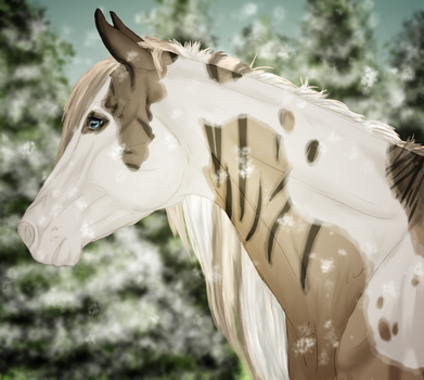 5150 -SR Beyond Two Souls by The-Last-Filly
