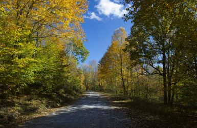 Country road by FOTOSHOPIC