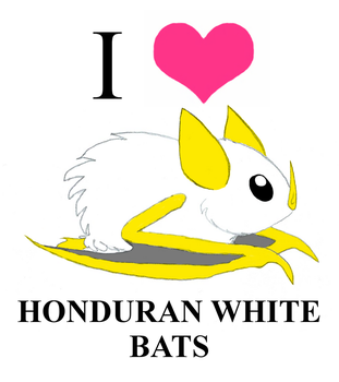 I heart Honduran White Bats by Midniteoil-Burning