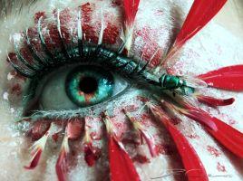 Fly in my eye by PixieCold