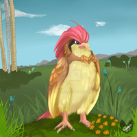 Pokemon: Pidgeotto by Takarti