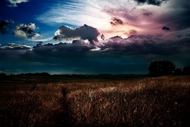 Clouds by apfe