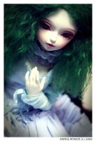 Elfdoll meet - Miyu by animal-nitrate