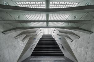 guillemins by schnotte