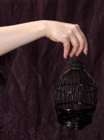 hand and cage by Meltys-stock
