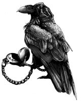 Raven with Pocketwatch by GreenAirplane