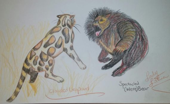 Clouded Leopard v Speckled (were) Bear by ladylithia