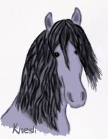 Drawing of a mare by Kresli