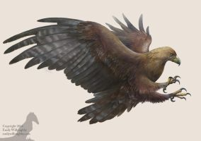 Golden Eagle by EWilloughby
