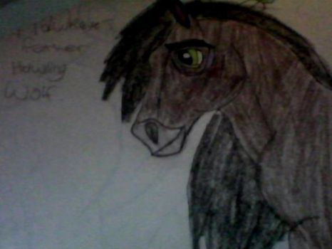 Howling Wolf (updated him) by ClaireBear26