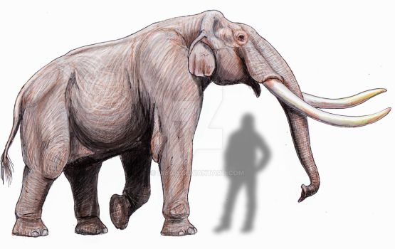 Mammuthus gromovi by DiBgd