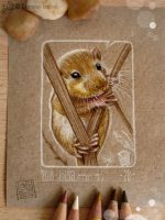 28 - Dormouse by Loisa